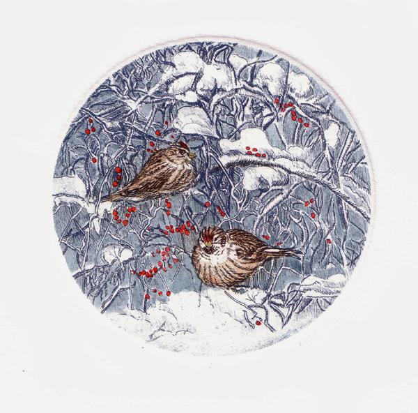 birds in winter1