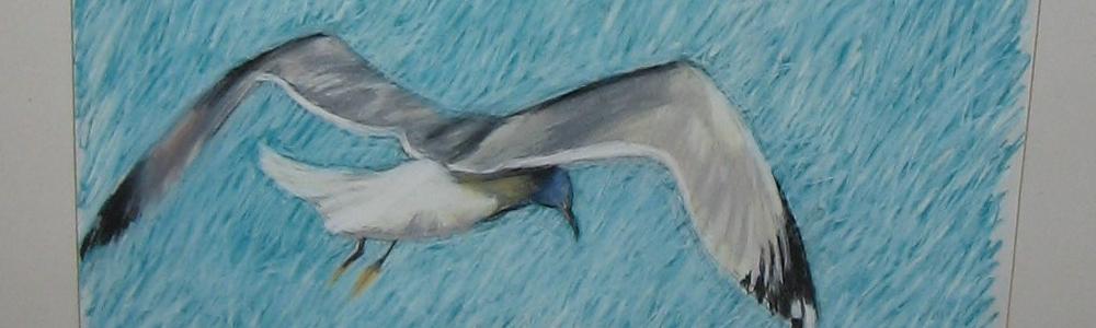 seagull for slider